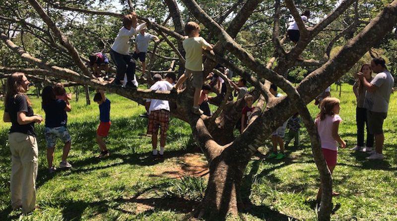 10 estratégias para aprimorar a experiência das crianças nos parques