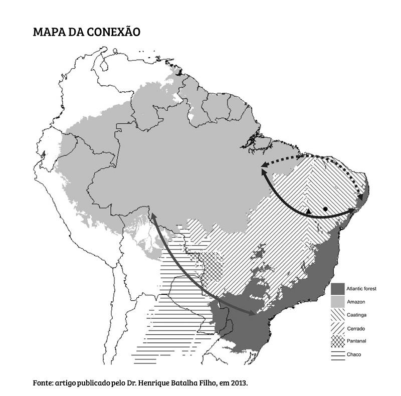 Sooretama: a reserva capixaba onde inúmeras evidências indicam que Mata Atlântica e Amazônia já estiveram ligadas