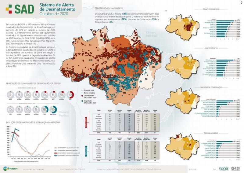Amazônia tem o outubro com o maior desmatamento dos últimos dez anos