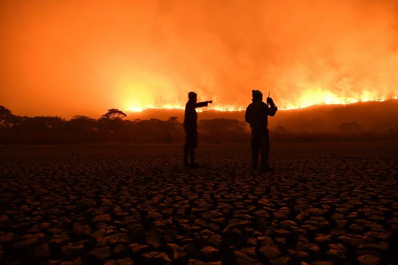 """""""Pantanal - Vida, Morte e Renascimento"""": exposição virtual reúne olhar de grandes nomes da fotografia sobre o bioma tão castigado"""