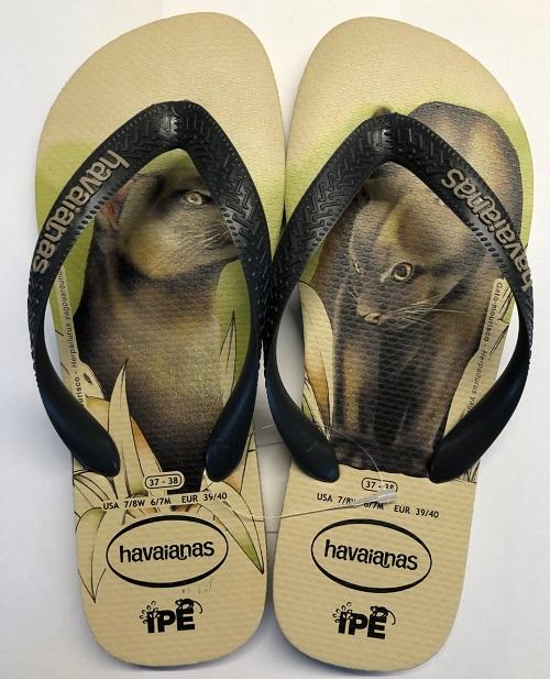 Renda de coleção de sandálias Instituto IPÊ ajuda em ações para ajudar animais feridos pelos incêndios do Pantanal