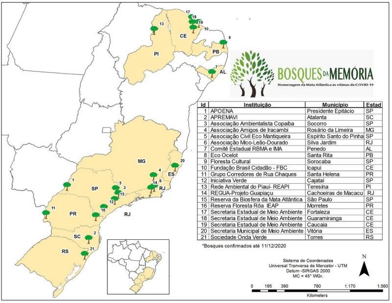 Bosques da Memória: campanha homenageia brasileiros vítimas da COVID-19 através do plantio de árvores na Mata Atlântica