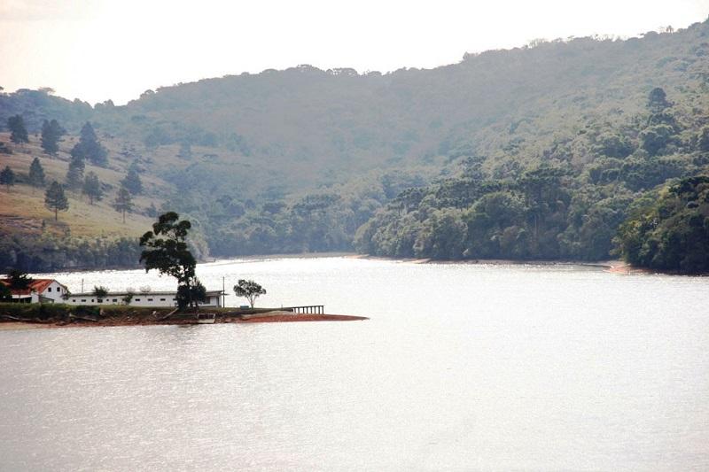 Peixes em reservatório no Paraná apresentam contaminação por metais pesados e agrotóxicos já banidos no país