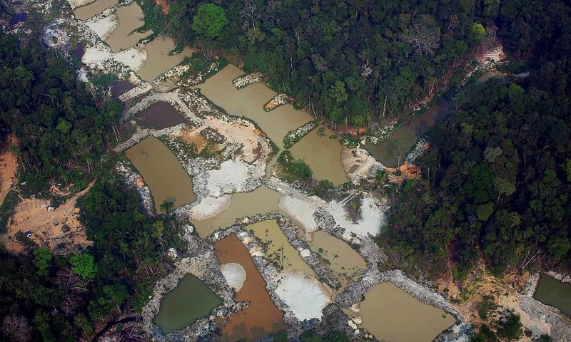 Governo de Roraima viola Constituição e libera mineração de garimpo no estado - e com uso de mercúrio