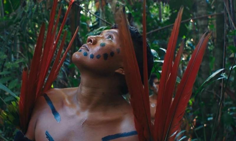 A Última Floresta', filme de Luiz Bolognesi, tem roteiro de Davi Kopenawa