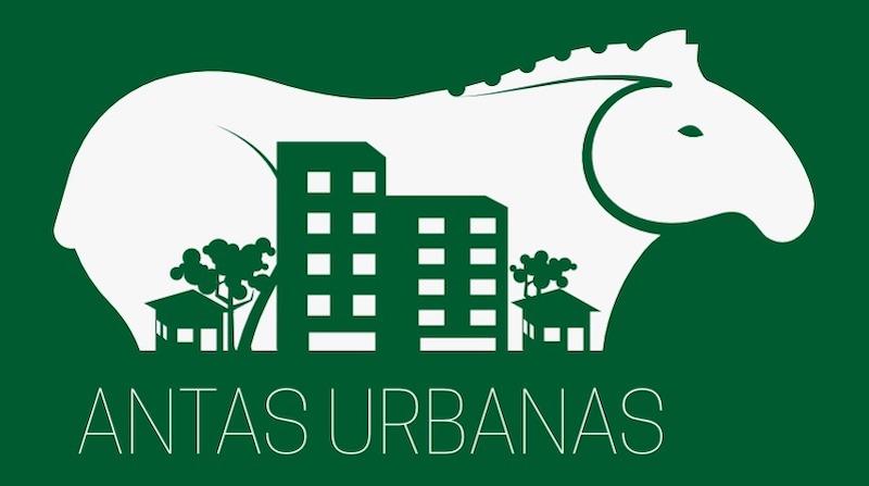 Com a ajuda de moradores de Campo Grande, MS, pesquisadores vão mapear trajetos urbanos das antas e realizar estudo inédito