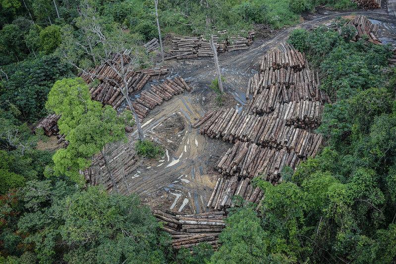 Alertas de desmatamento na Amazônia atingem 1.062 km2 e batem recorde em junho