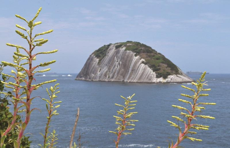 O Monumento Natural das Ilhas Cagarras, no RJ, é reconhecido internacionalmente como santuário da biodiversidade