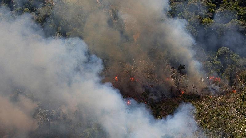 Mais de 400 servidores do Ibama denunciam que fiscalização ambiental está paralisada por causa de novas regras impostas por Salles