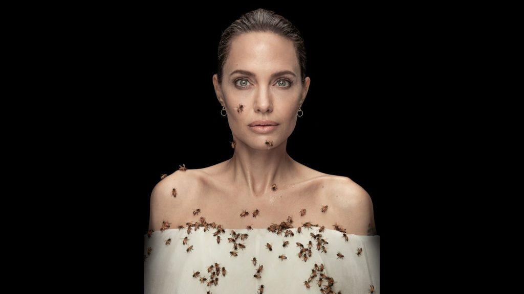 Angelina Jolie posa cercada por abelhas para divulgar programa da Unesco de incentivo a apicultoras