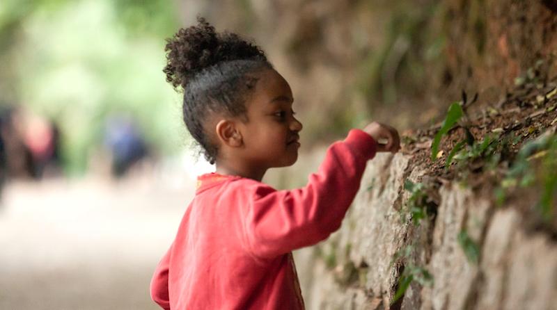 Backyardbio: registre a natureza ao seu redor e compartilhe com o mundo