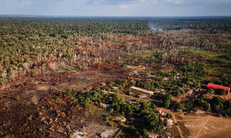 Amazônia tem aumento de mais de 40% no desmatamento em abril