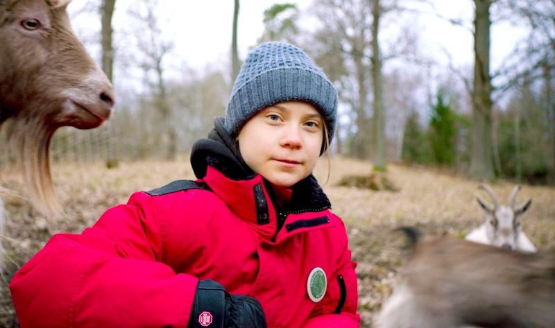 """""""Se não mudarmos, estamos f...dos"""", diz Greta Thunberg sobre impactos ambientais da pecuária no mundo"""