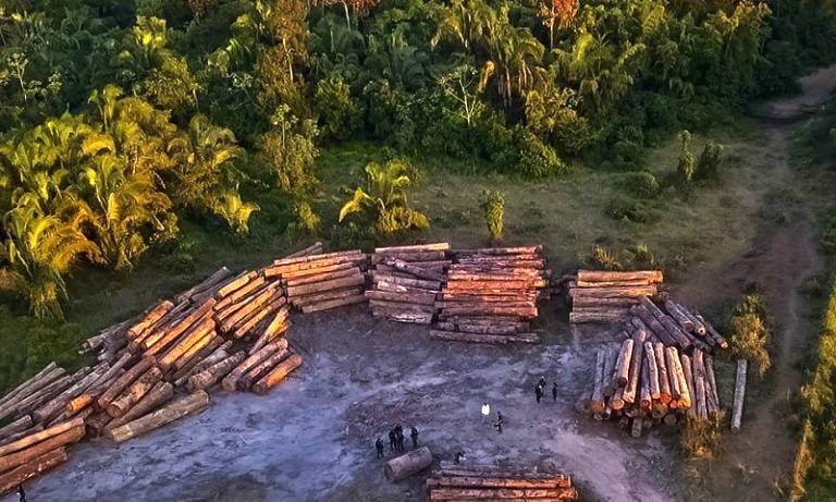 Organizações alertam para a extinção do licenciamento ambiental com 'nova lei', que pode ser votada em breve