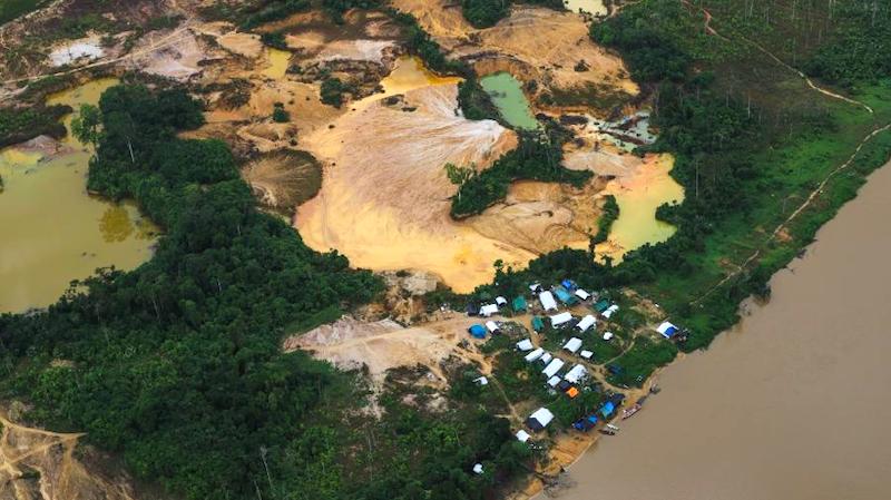Os Yanomami pedem socorro! Há uma semana garimpeiros atacam comunidade a tiros; duas crianças foram mortas