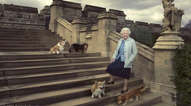 Em discurso no Parlamento, Rainha Elizabeth apresenta novas leis pelo bem-estar dos animais no Reino Unido