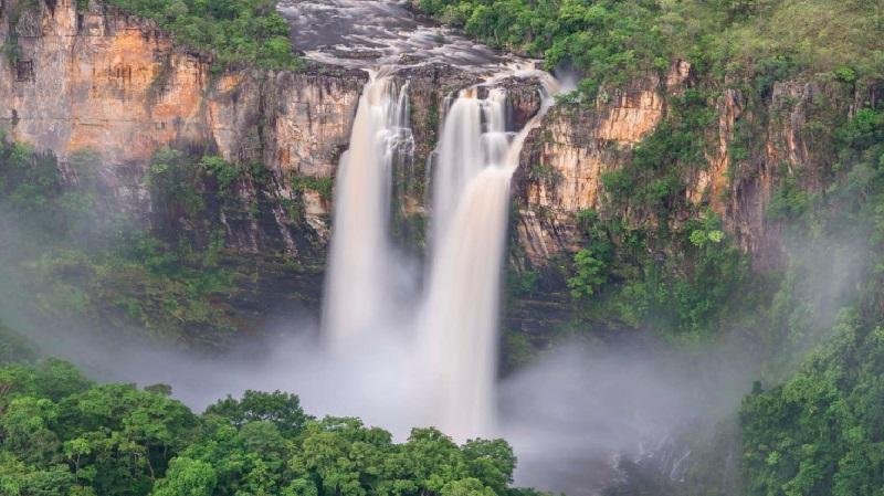 Cerrado Vivo: novo portal multimídia traz informações e histórias sobre este bioma tão importante para o clima do país