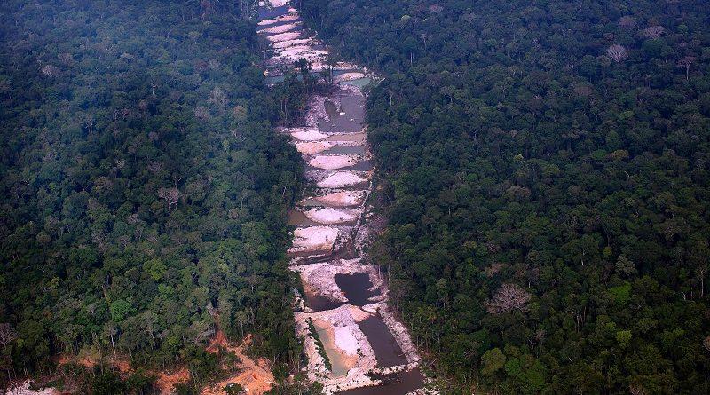 Amazônia tem o maior índice de desmatamento para o mês de agosto dos últimos dez anos