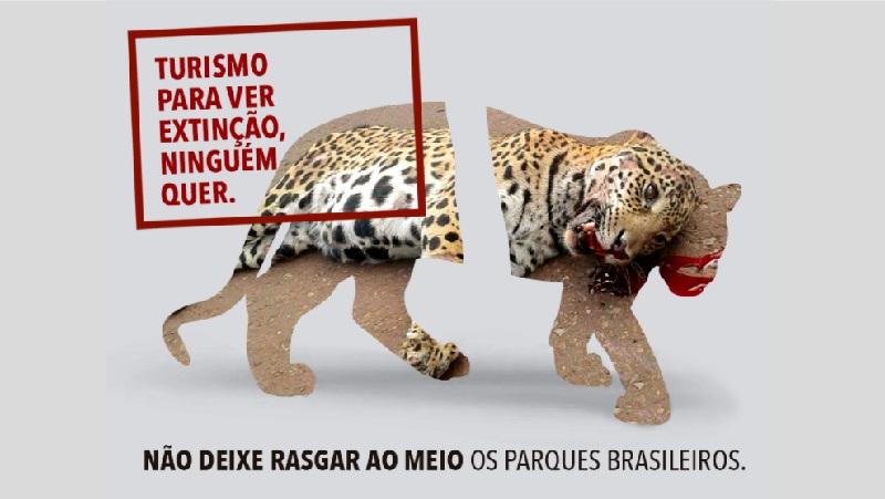 Parque Nacional do Iguaçu: a estrada não é o caminho!