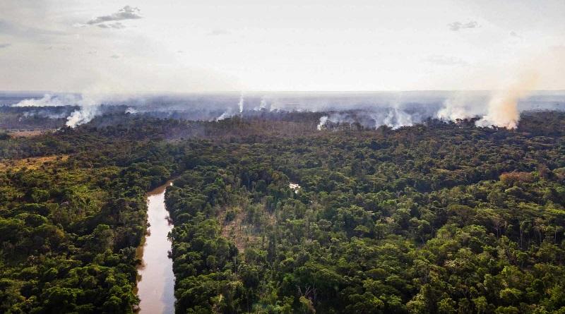 Amazônia e Cerrado têm focos de queimada recorde em junho