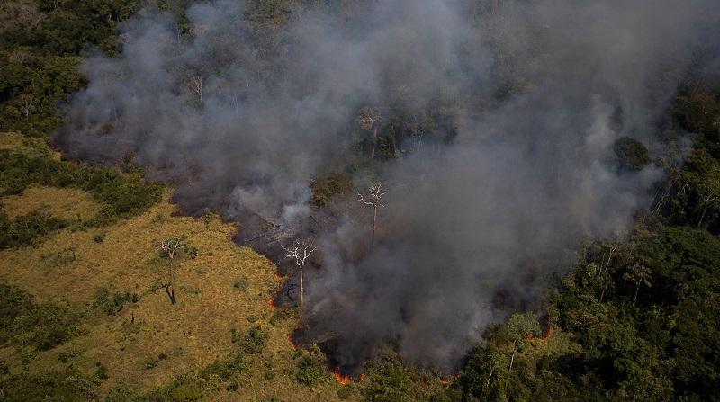 Desmatamento e crise climática estão fazendo com que parte da Amazônia já emita mais CO2 do que absorva