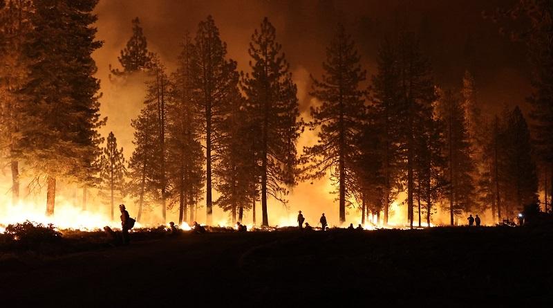 14 mil bombeiros trabalham para controlar 17 diferentes incêndios na Califórnia