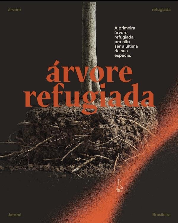 Árvore refugiada: em protesto simbólico contra a destruição da Amazônia, jatobá 'pede asilo' à embaixada da Noruega