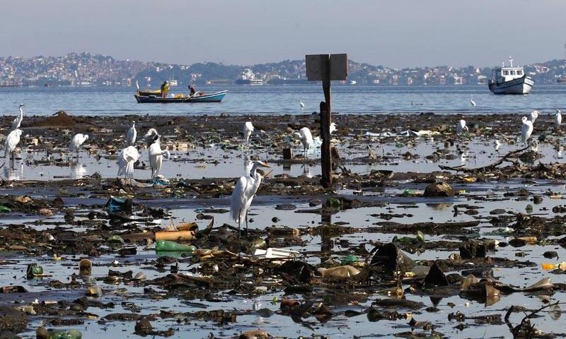 Quase 100 toneladas de lixo jogadas diariamente na Baía de Guanabara: há esperança para sua recuperação?